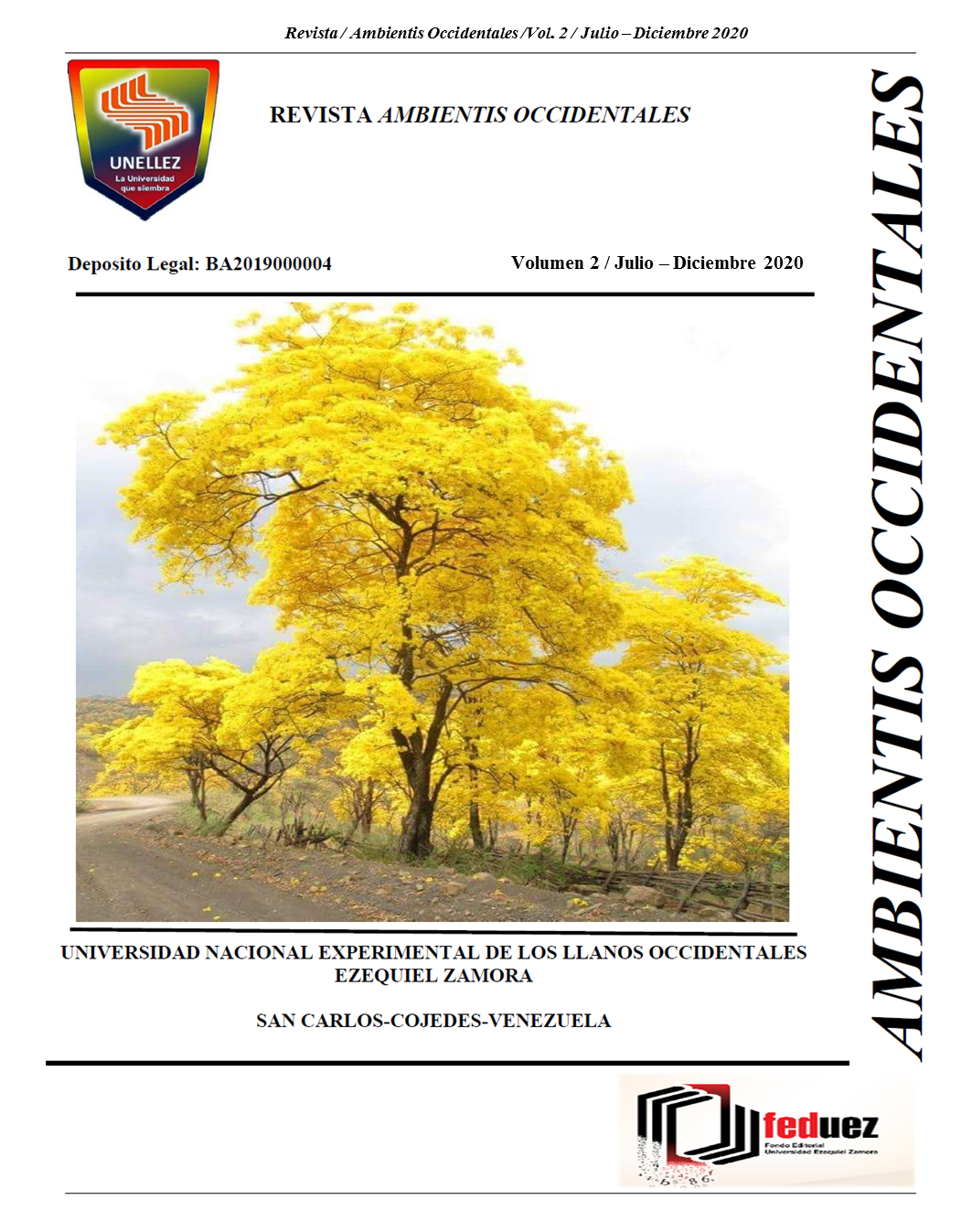 Ver Vol. 2 (2020): Revista AMBIENTIS OCCIDENTALES