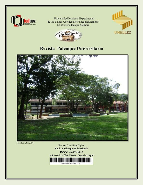 Ver Núm. 01 (2020): Revista Palenque Universitario